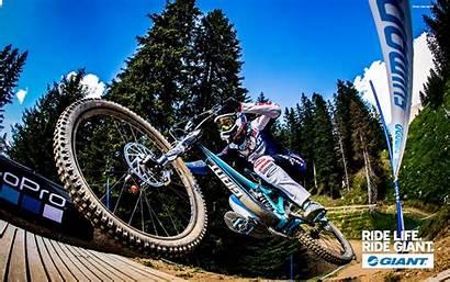 Downhill Glory Bike Mountain Giant Wallpapers Advanced
