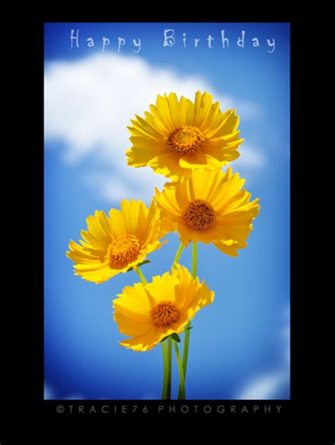 happy birthday  flowers ecards greeting cards