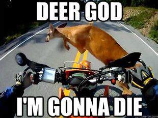 Funny Motorcycle Meme - motorcycle memes funny motorcycle memes 21 motorcycle quotes and memes pinterest