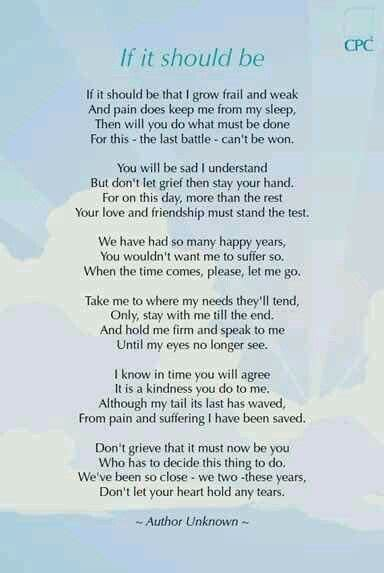 dont  sad bless  dogs dog poems pet loss grief