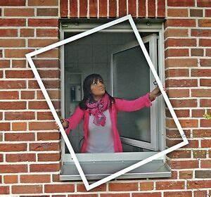 Fliegengitter Bodentiefe Fenster : top fliegengitter fenster insektenschutz f r bodentiefe ~ Watch28wear.com Haus und Dekorationen
