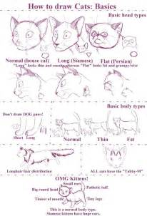 how to draw cats how to draw cats by stock heil on deviantart