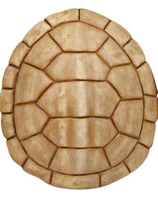 NOW! New Year Deal: Ivory Faux Turtle Shell Wall Plaque