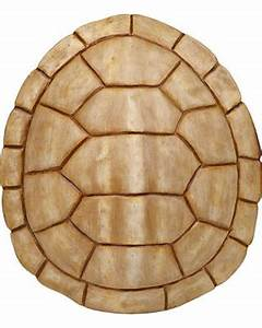 Don't Miss This Bargain: Ivory Faux Turtle Shell Wall Plaque