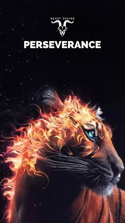 Beast Desire Quotes Motivational Word Beastdesire Follow