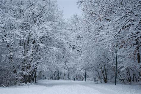 snow picture snowy park