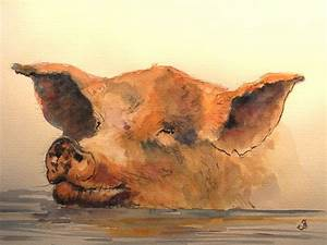 watercolor paintings of pigs Swimming pig watercolor by