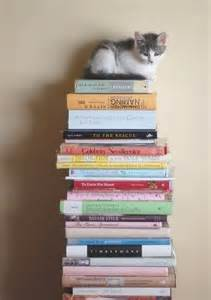 Cat On a Pile of Books