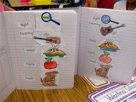 kindergarten smiles five senses 296 | IMG 6372