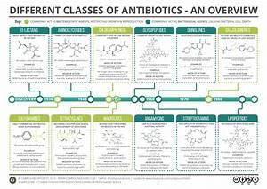 Main Classes Of Antibiotics Summary