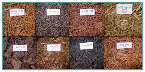 Types Of Mulch For Landscaping