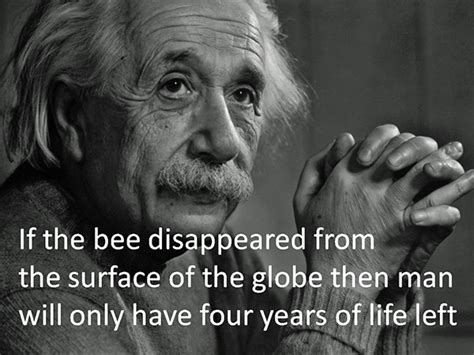 Quotes About Bees Quotesgram