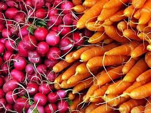 Gemüse Richtig Lagern : gemuese richtig lagern ~ Whattoseeinmadrid.com Haus und Dekorationen