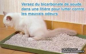 Litiere Chat Anti Odeur : l 39 ingr dient magique contre les odeurs de liti re le bicarbonate ~ Melissatoandfro.com Idées de Décoration