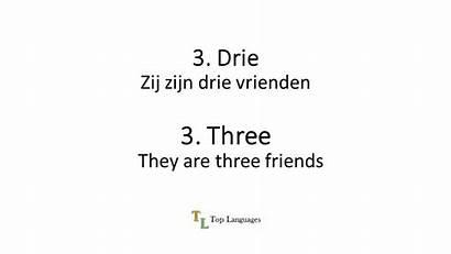 Dutch English Numbers Sentences Zinnen