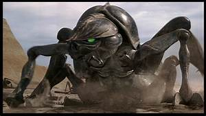 Xenomorphs vs Arachnids (Starship Troopers Film ...