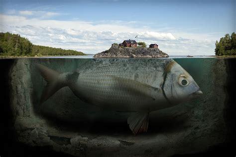surreal distorted reality  photographer erik johansson