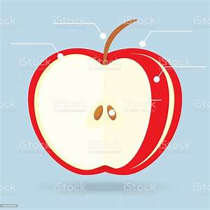 Apple Slices Structure Diagram Isolated On Background