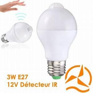 Ampoule Détecteur De Présence : eclairage led 12 volts energie douce ~ Edinachiropracticcenter.com Idées de Décoration