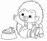 Hedgehog Coloring Coloringpages1001 Animals sketch template