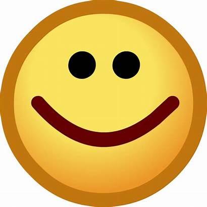 Emoticon Happy Face Penguin Club Smiley Emoticons