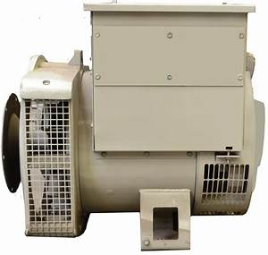 Generator Leroy Somer