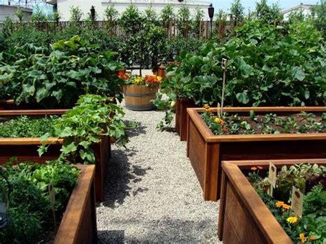 Ideas For Backyard Gardens by Backyard Vegetable Garden Design Ideas