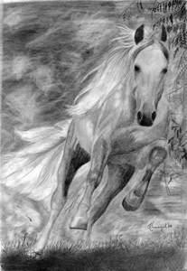 Running Horse Pencil Drawings