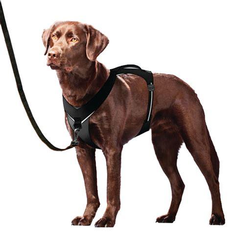kurgo  tech adventure dog harness black  baxterboo