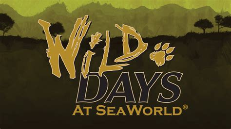 SeaWorld Orlando to debut Wild Days weekends in January