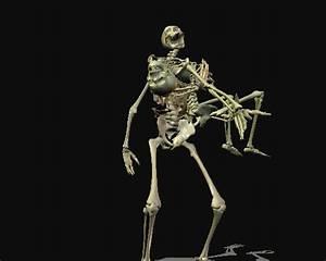 Skeleton Love For Chalimar by AngelicPhoeniX on DeviantArt