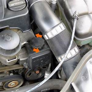 Check    Add Power Steering Fluid
