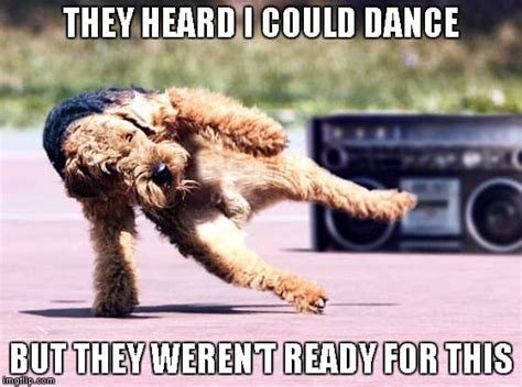YouTube Videos Funny Dancing Dog