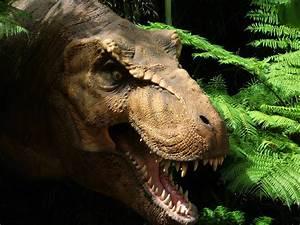 Jurassic Park T-Rex by CometColt on DeviantArt