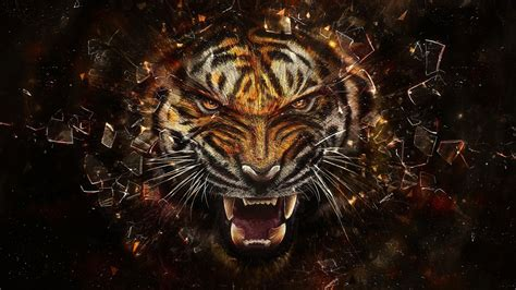 hd hintergrundbilder tiger scherben zaehne dunkle desktop