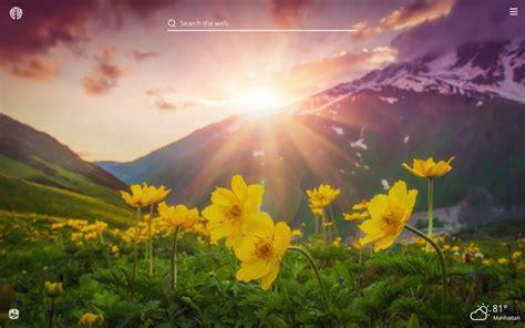Sunshine Hd Wallpapers New Tab Impressive Nature