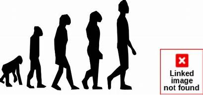Evolution Clipart Clip Theory Keeshonden 20clipart Clipground