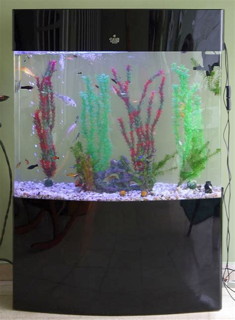 17 pleasing contemporary fish tank ideas