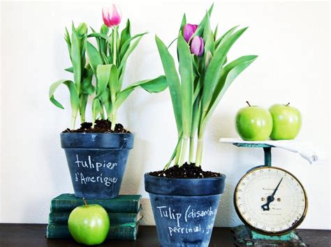 18 Spring Decor Ideas: 35 Ways To Decorate For Easter