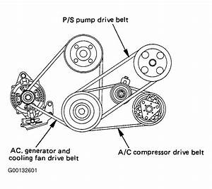 1994 Isuzu Rodeo Serpentine Belt Routing And Timing Belt Diagrams