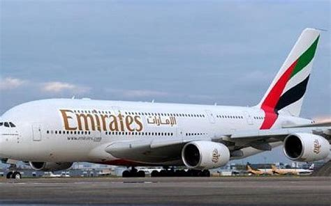 Snake on a plane grounds Emirates flight | The Times of Israel