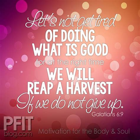 motivation   body  soul