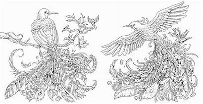 Kerby Rosanes Coloring Animals Adult Pages Printable