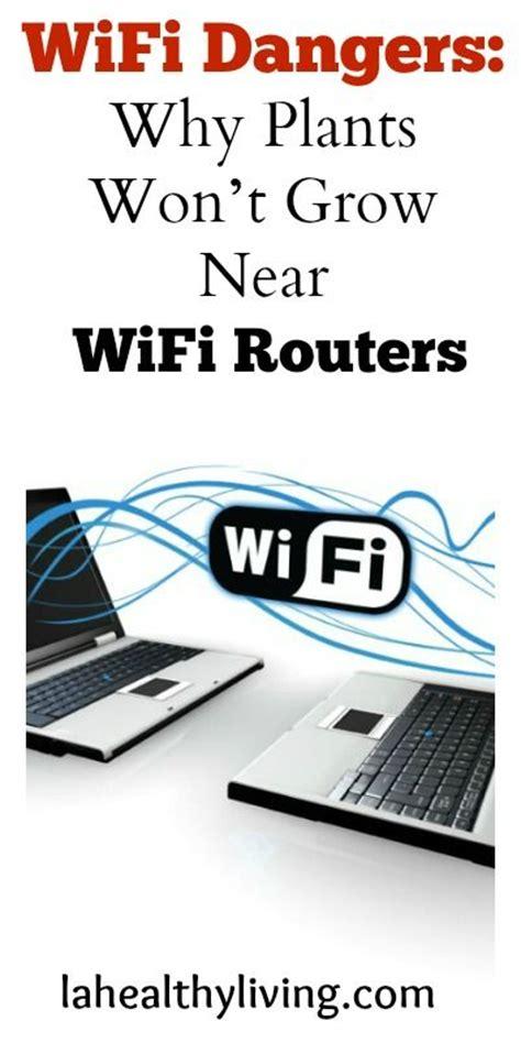 wifi dangers why plants won t grow near wifi routers we