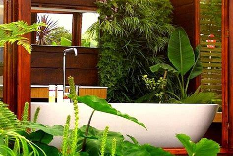 plante pour salle de bain sombre id 233 es pour la salle de bains mon id 233 es pour la salle de bains