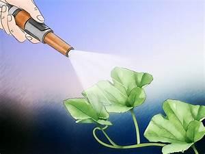 Ph Du Sol : 3 mani res de ajuster le ph du sol wikihow ~ Melissatoandfro.com Idées de Décoration
