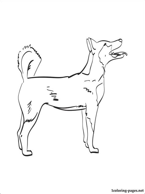 east siberian laika coloring page coloring pages