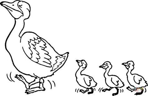 Kleurplaat Eenden Familie by Duck And Ducklings Coloring Page Free Printable Coloring