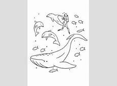 Malvorlagen Fische, Delfine, Wale Lustige Ausmalbilder