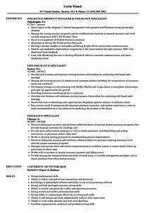 Insurance Specialist Job Resume Template Why You Should